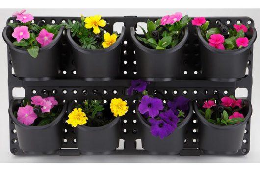 Vertikālais panelis augiem Botāniskais dārzs