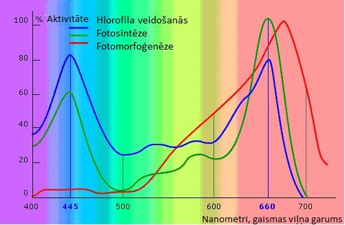 Zinātniskā informācija